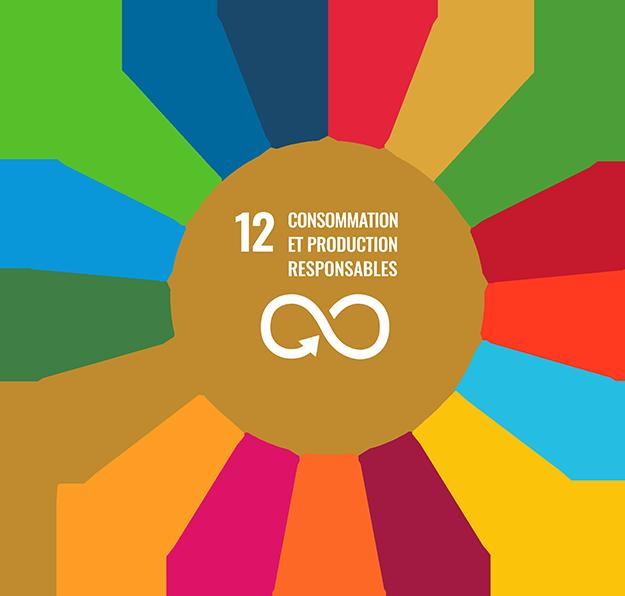 Objectif de développement durable de l'ONU